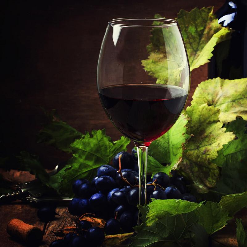vins amb denomincaió d'origen